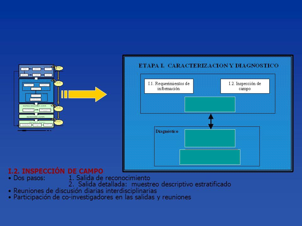 I.2. INSPECCIÓN DE CAMPO Dos pasos:1. Salida de reconocimiento 2. Salida detallada: muestreo descriptivo estratificado Reuniones de discusión diarias