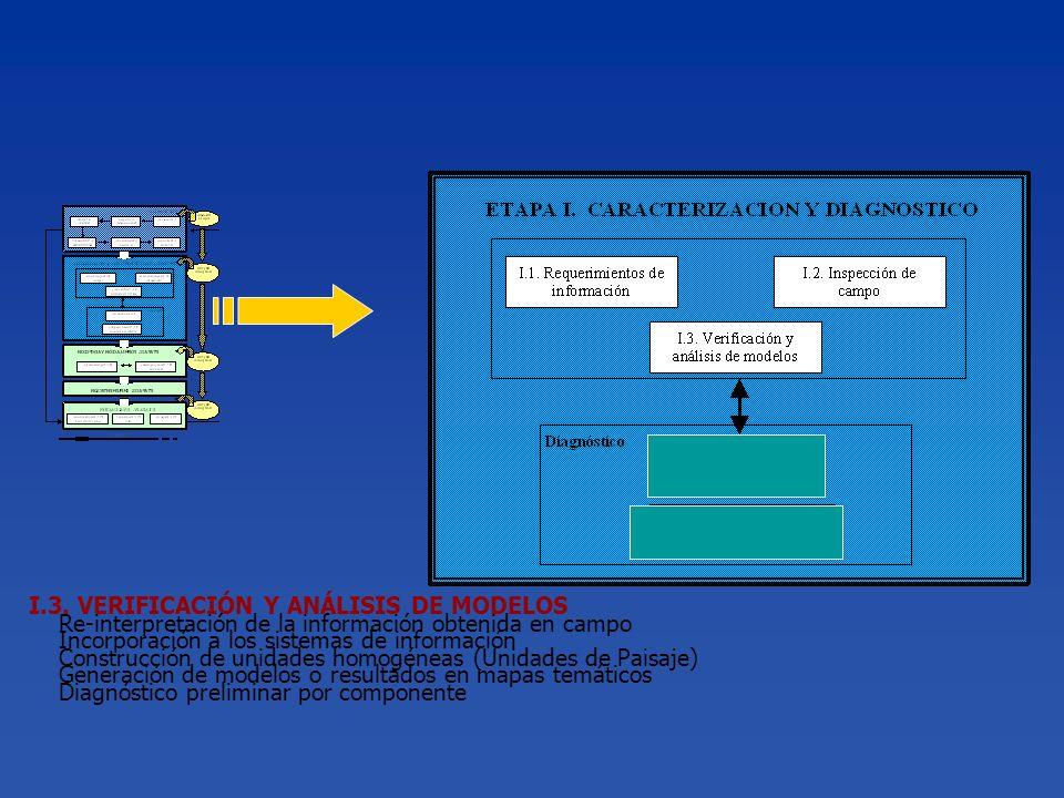 I.3. VERIFICACIÓN Y ANÁLISIS DE MODELOS Re-interpretación de la información obtenida en campo Incorporación a los sistemas de información Construcción
