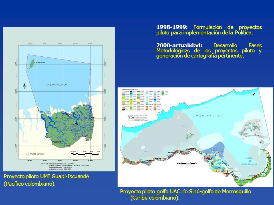 1998-1999: Formulación de proyectos piloto para implementación de la Política. 2000-actualidad: Desarrollo Fases Metodológicas de los proyectos piloto