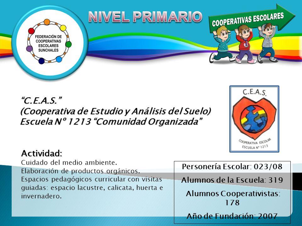 C.E.A.S. (Cooperativa de Estudio y Análisis del Suelo) Escuela Nº 1213 Comunidad Organizada Personería Escolar: 023/08 Alumnos de la Escuela: 319 Alum