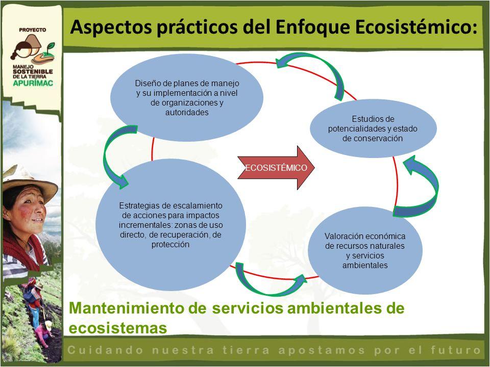 Aspectos prácticos del Enfoque Ecosistémico: Mantenimiento de servicios ambientales de ecosistemas Diseño de planes de manejo y su implementación a ni