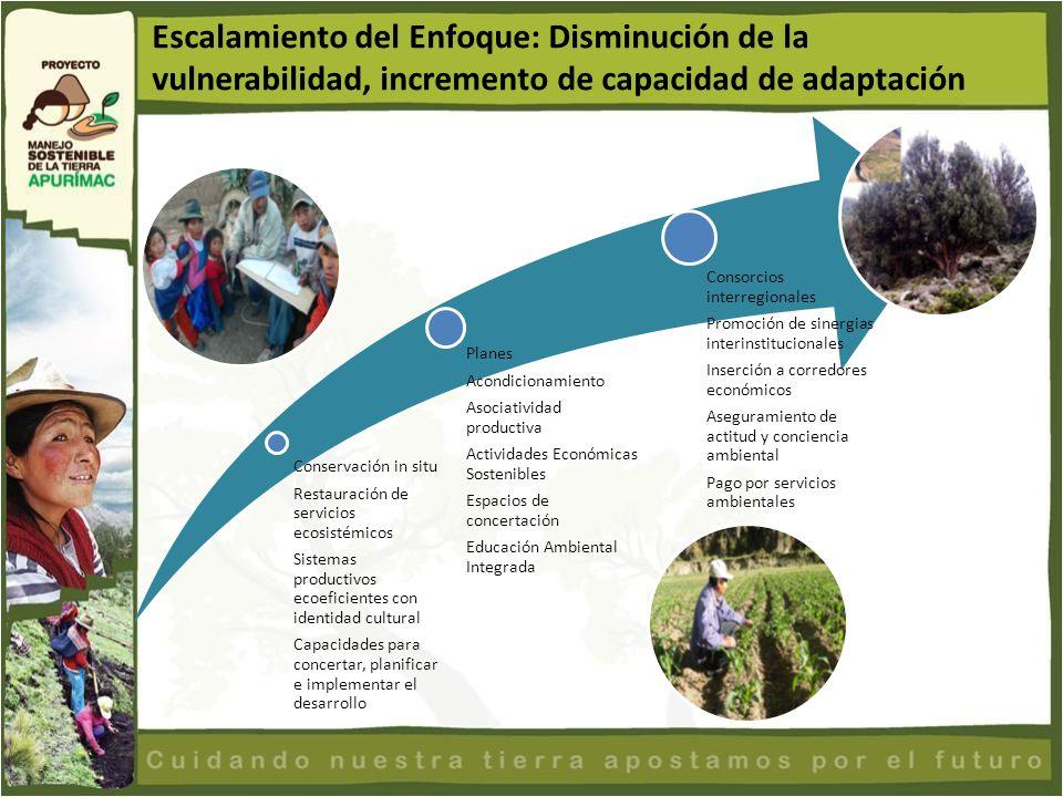 Conservación in situ Restauración de servicios ecosistémicos Sistemas productivos ecoeficientes con identidad cultural Capacidades para concertar, pla