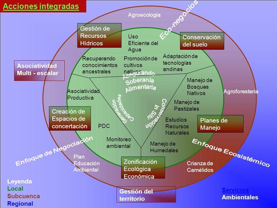 Servicios Servicios Ambientales Acciones integradas Asociatividad Multi - escalar Agroecología Crianza de Camélidos Recuperando conocimientos ancestra