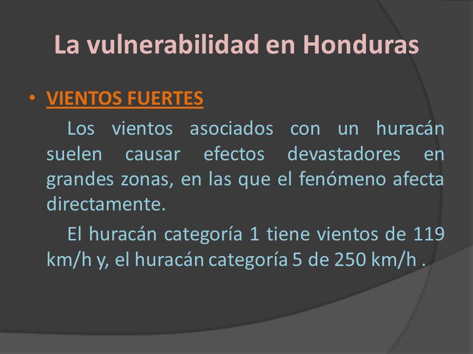 La vulnerabilidad en Honduras VIENTOS FUERTES Los vientos asociados con un huracán suelen causar efectos devastadores en grandes zonas, en las que el