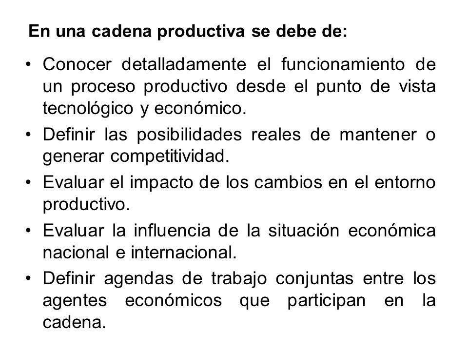 En una cadena productiva se debe de: Conocer detalladamente el funcionamiento de un proceso productivo desde el punto de vista tecnológico y económico.
