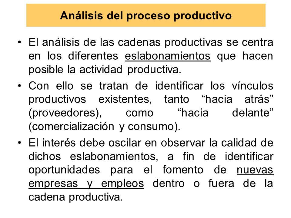 Análisis del proceso productivo El análisis de las cadenas productivas se centra en los diferentes eslabonamientos que hacen posible la actividad productiva.