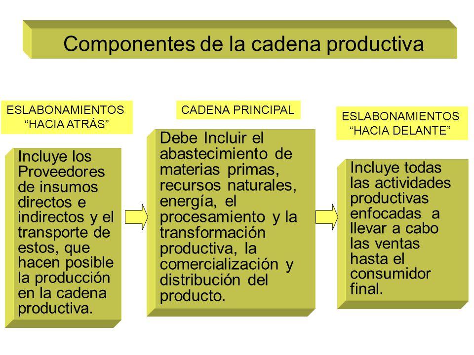 Componentes de la cadena productiva Debe Incluir el abastecimiento de materias primas, recursos naturales, energía, el procesamiento y la transformación productiva, la comercialización y distribución del producto.