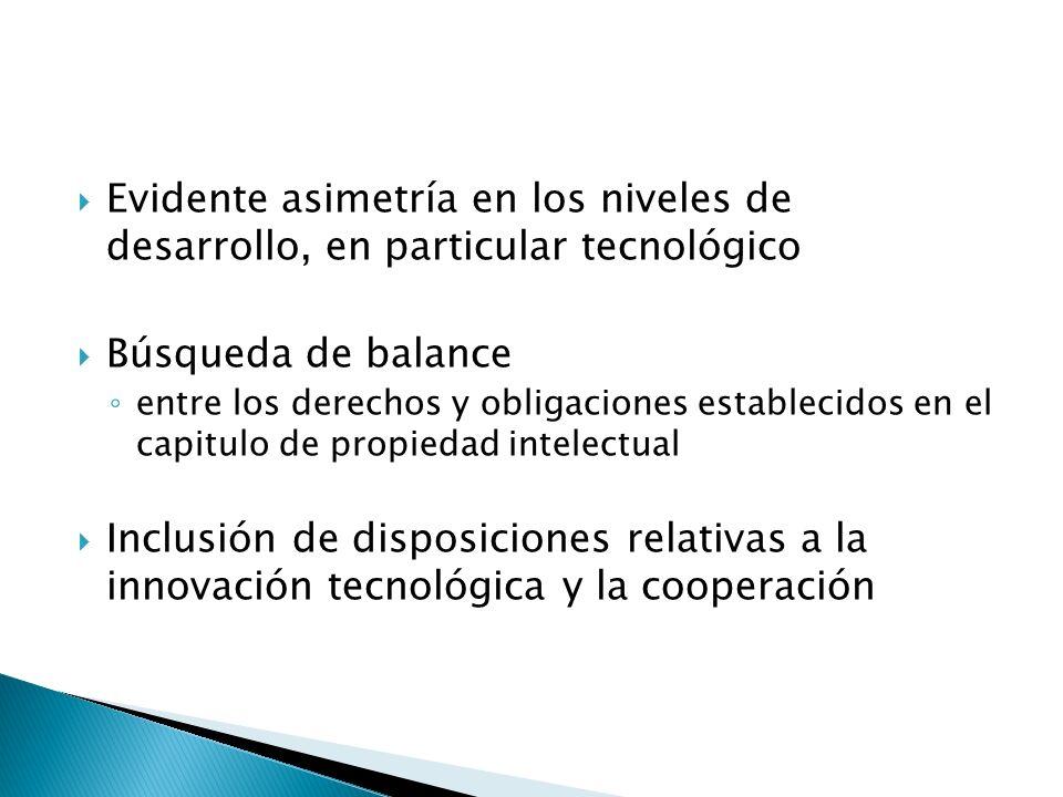 Evidente asimetría en los niveles de desarrollo, en particular tecnológico Búsqueda de balance entre los derechos y obligaciones establecidos en el capitulo de propiedad intelectual Inclusión de disposiciones relativas a la innovación tecnológica y la cooperación