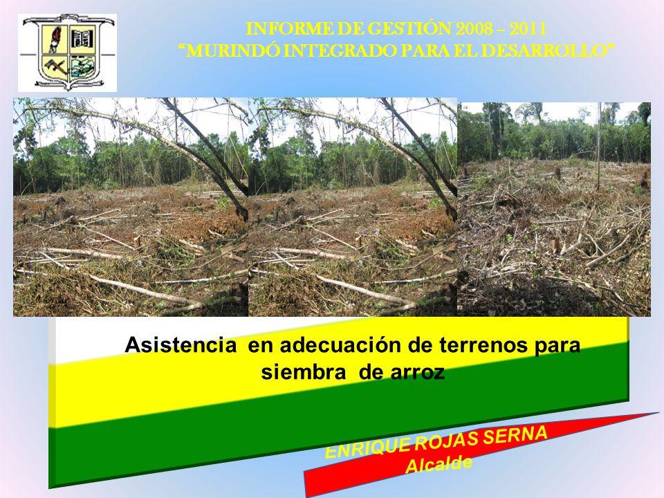 INFORME DE GESTIÓN 2008 – 2011 MURINDÓ INTEGRADO PARA EL DESARROLLO ENRIQUE ROJAS SERNA Alcalde Asistencia en adecuación de terrenos para siembra de a