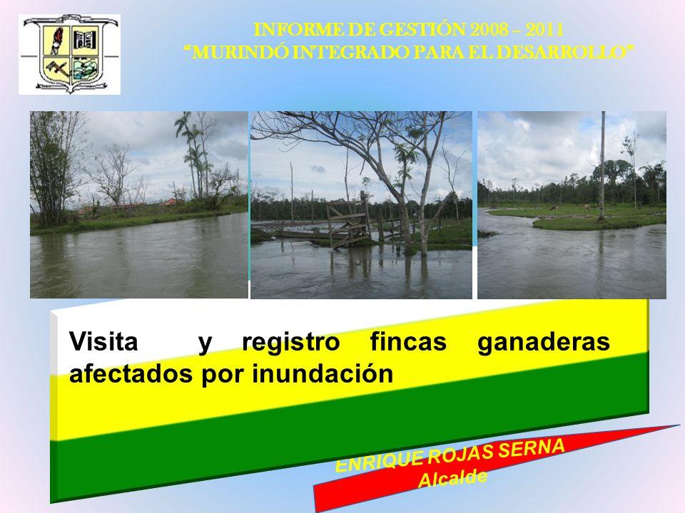 INFORME DE GESTIÓN 2008 – 2011 MURINDÓ INTEGRADO PARA EL DESARROLLO ENRIQUE ROJAS SERNA Alcalde Visita y registro fincas ganaderas afectados por inund