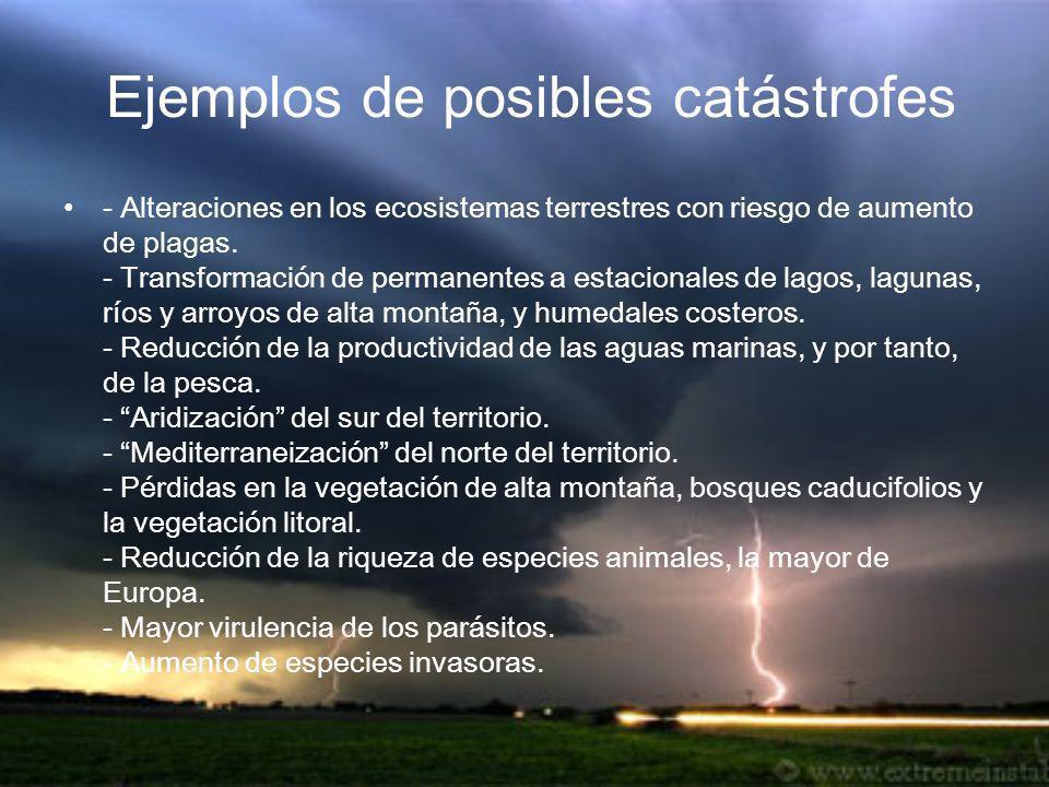 E jemplos de posibles catástrofes - Alteraciones en los ecosistemas terrestres con riesgo de aumento de plagas. - Transformación de permanentes a esta