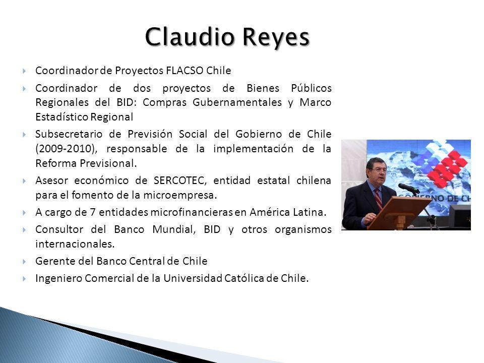 Coordinador de Proyectos FLACSO Chile Coordinador de dos proyectos de Bienes Públicos Regionales del BID: Compras Gubernamentales y Marco Estadístico