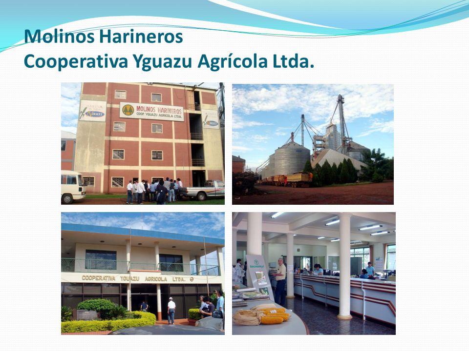 Molinos Harineros Cooperativa Yguazu Agrícola Ltda.