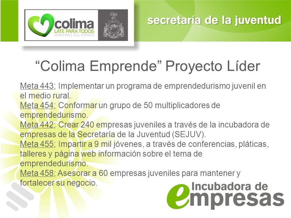 Colima Emprende Proyecto Líder Meta 443; Implementar un programa de emprendedurismo juvenil en el medio rural. Meta 454; Conformar un grupo de 50 mult