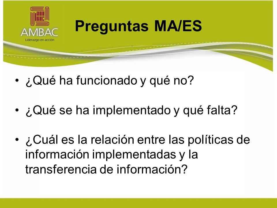 Preguntas MA/ES ¿Qué ha funcionado y qué no. ¿Qué se ha implementado y qué falta.