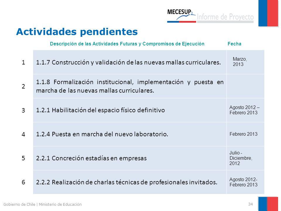 Actividades pendientes 34 Gobierno de Chile | Ministerio de Educación 1 1.1.7 Construcción y validación de las nuevas mallas curriculares. Marzo, 2013