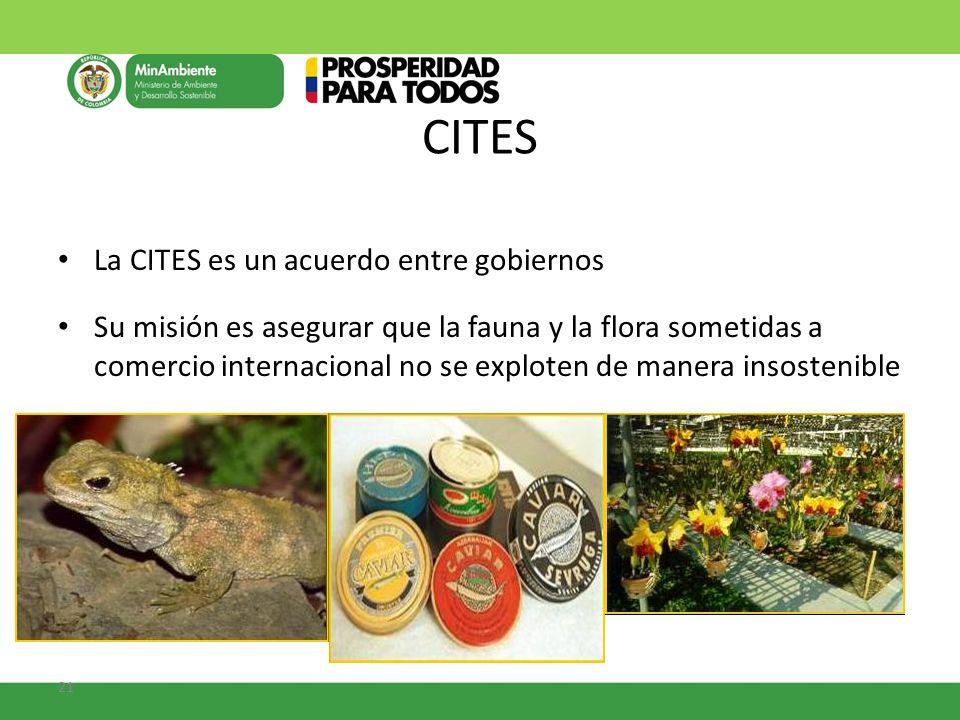 21 CITES La CITES es un acuerdo entre gobiernos Su misión es asegurar que la fauna y la flora sometidas a comercio internacional no se exploten de man