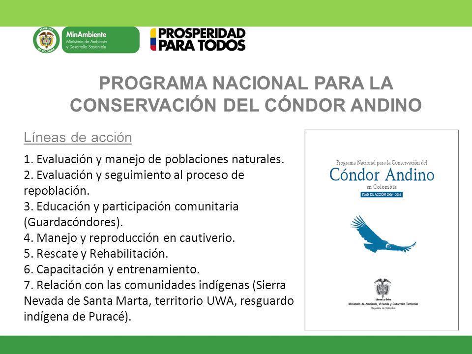 PROGRAMA NACIONAL PARA LA CONSERVACIÓN DEL CÓNDOR ANDINO Líneas de acción 1. Evaluación y manejo de poblaciones naturales. 2. Evaluación y seguimiento