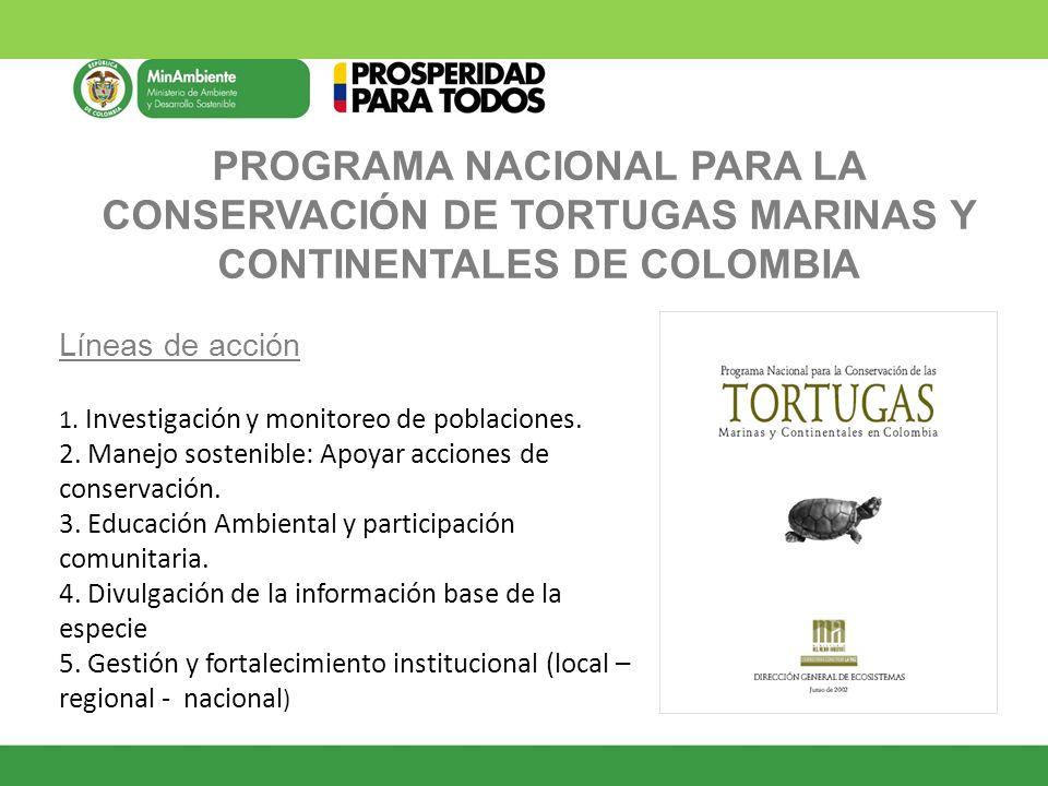 PROGRAMA NACIONAL PARA LA CONSERVACIÓN DE TORTUGAS MARINAS Y CONTINENTALES DE COLOMBIA Líneas de acción 1. Investigación y monitoreo de poblaciones. 2