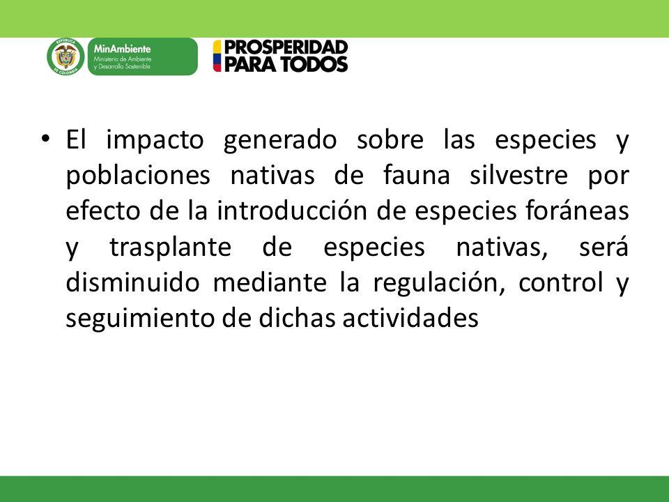 El impacto generado sobre las especies y poblaciones nativas de fauna silvestre por efecto de la introducción de especies foráneas y trasplante de esp