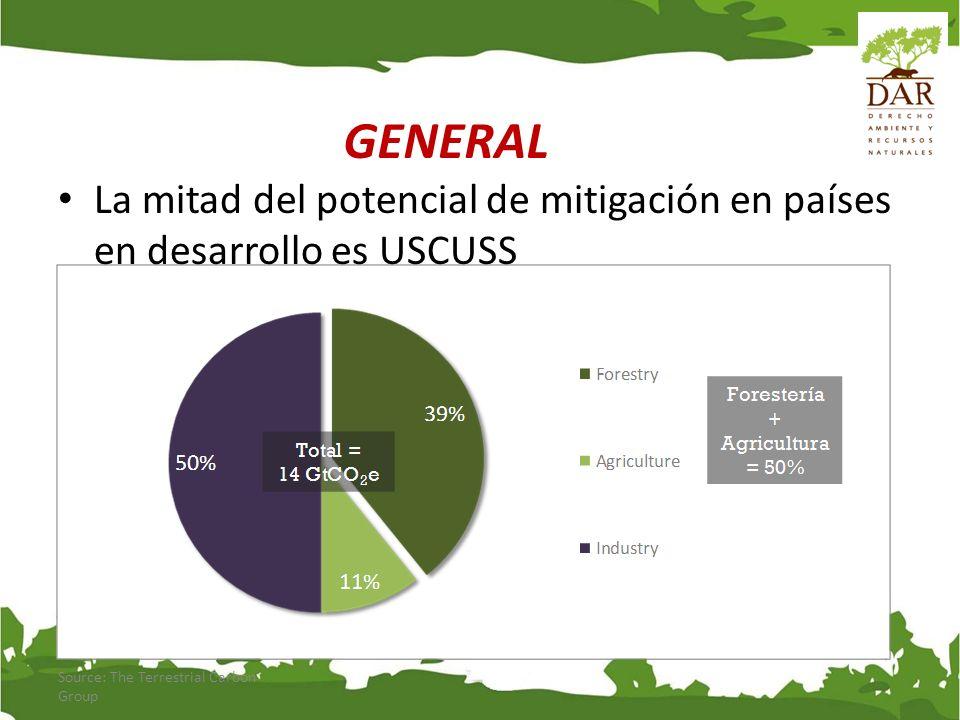 CNCC Estrategia Nacional Forestal DS Nº 031-2004-AG