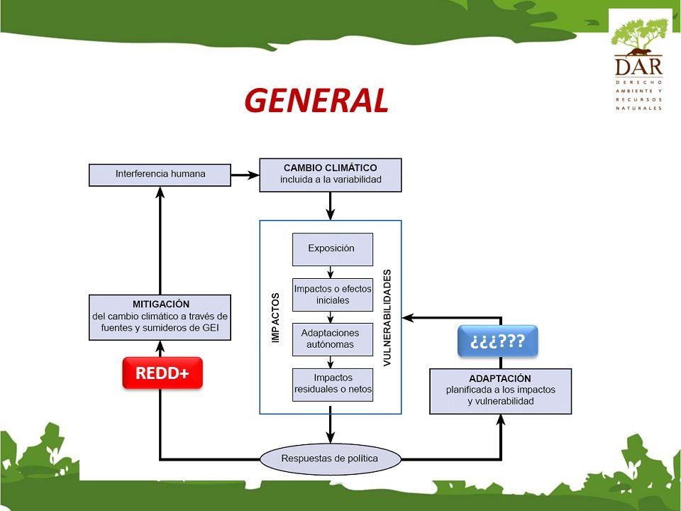 GENERAL Reducción de Emisiones de la Deforestación y la Degradación. + Plus