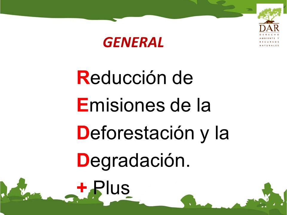 GENERAL Enfoques de política e incentivos positivos para las cuestiones relativas a la reducción de las emisiones derivadas de la deforestación (RED) y la degradación de los bosques en los países en desarrollo (REDD); y la función de la conservación, la gestión sostenible de los bosques y el aumento de las reservas forestales de carbono en los países en desarrollo (REDD +).