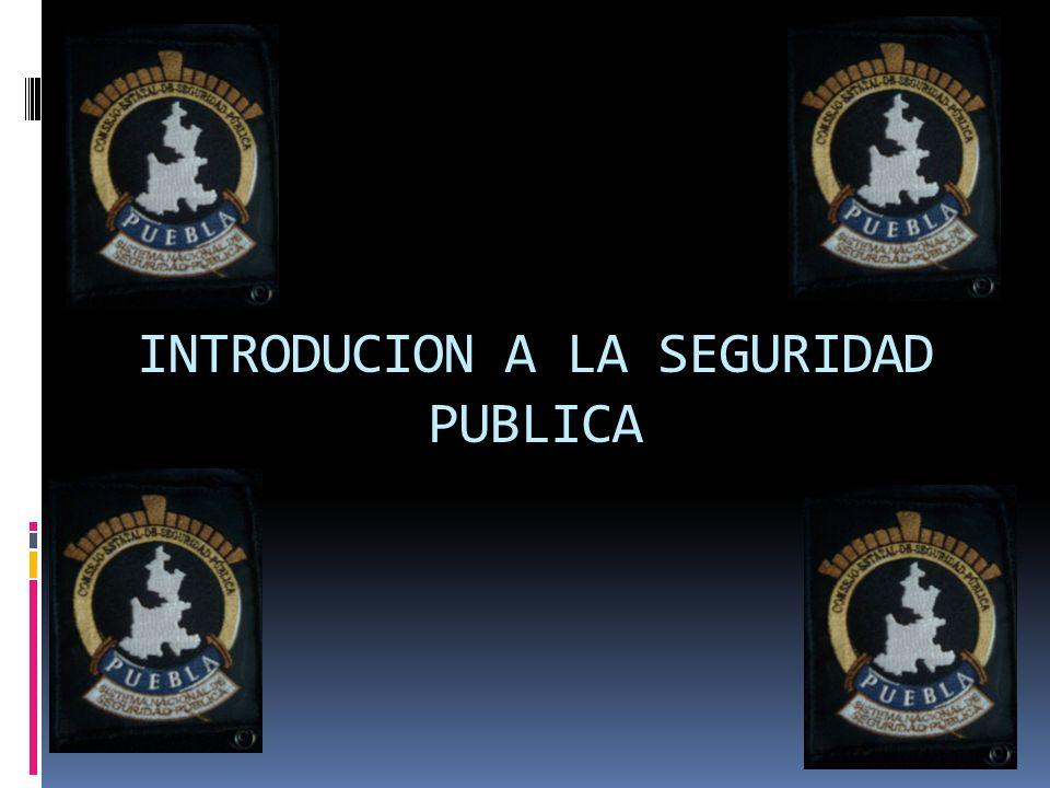 INTRODUCION A LA SEGURIDAD PUBLICA