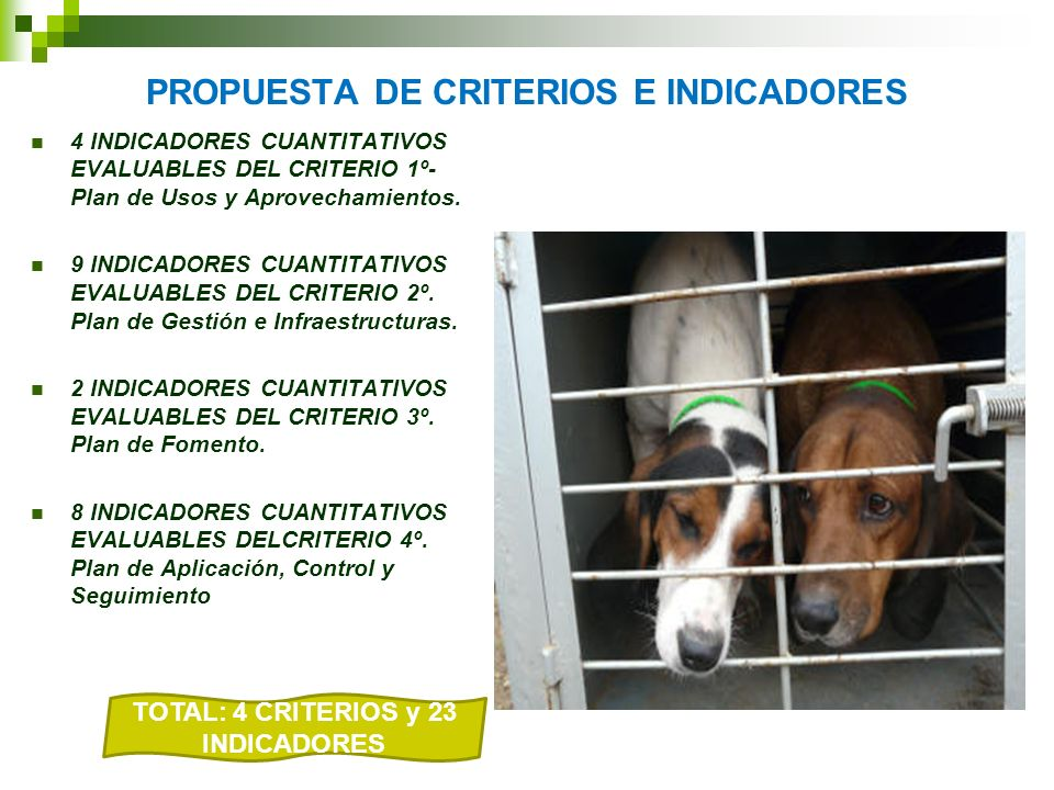 PROPUESTA DE CRITERIOS E INDICADORES 4 INDICADORES CUANTITATIVOS EVALUABLES DEL CRITERIO 1º- Plan de Usos y Aprovechamientos. 9 INDICADORES CUANTITATI
