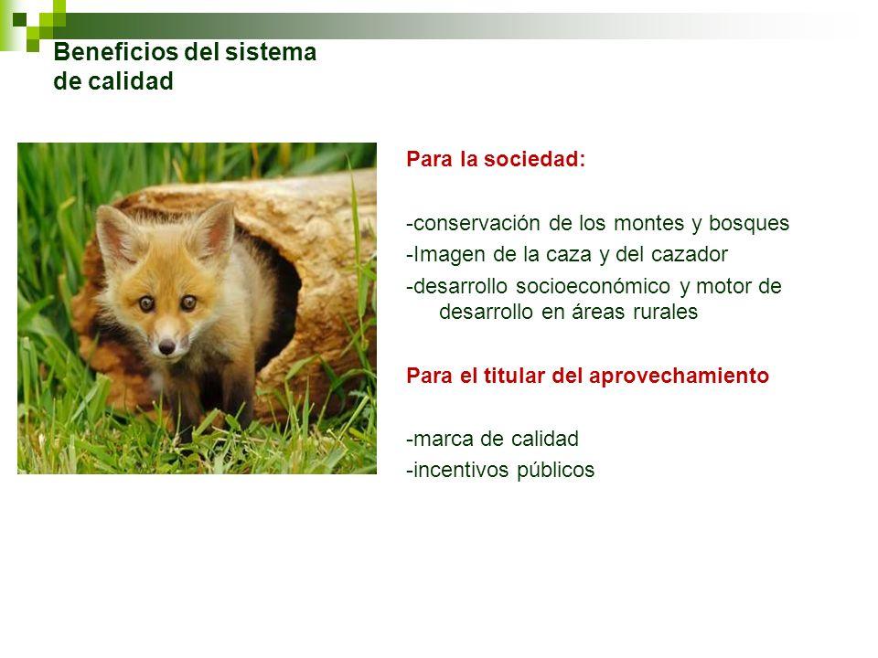 Beneficios del sistema de calidad Para la sociedad: -conservación de los montes y bosques -Imagen de la caza y del cazador -desarrollo socioeconómico