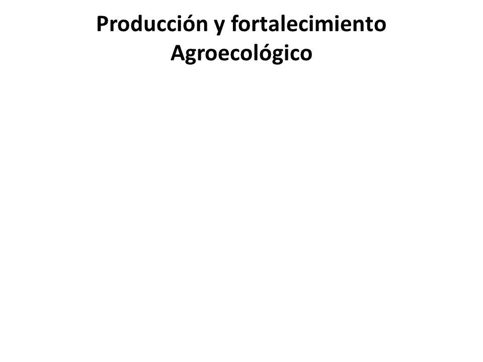 Producción y fortalecimiento Agroecológico
