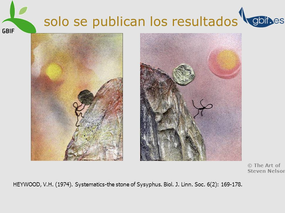 solo se publican los resultados HEYWOOD, V.H. (1974). Systematics-the stone of Sysyphus. Biol. J. Linn. Soc. 6(2): 169-178. © The Art of Steven Nelson