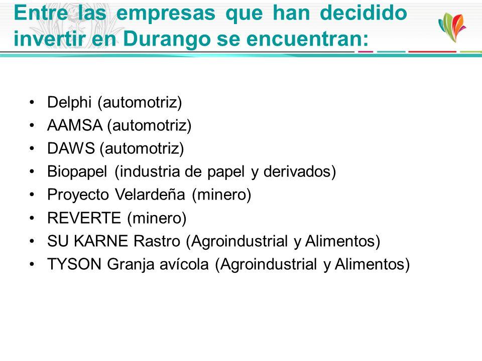 Entre las empresas que han decidido invertir en Durango se encuentran: Delphi (automotriz) AAMSA (automotriz) DAWS (automotriz) Biopapel (industria de