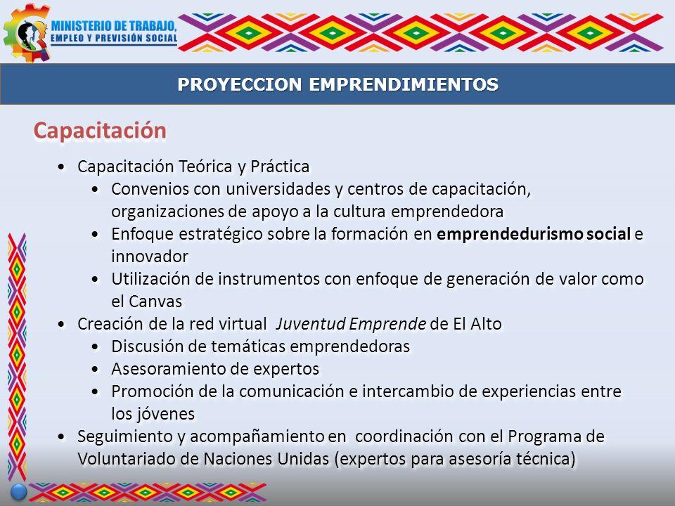 Capacitación Capacitación Teórica y Práctica Convenios con universidades y centros de capacitación, organizaciones de apoyo a la cultura emprendedora