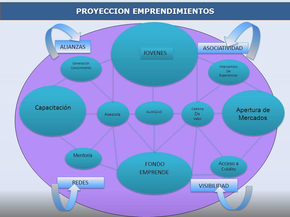 JOVENES FONDO EMPRENDE Capacitación Mentoría Asesoría Generación Conocimiento Apertura de Mercados Intercambio De Experiencias Intercambio De Experien