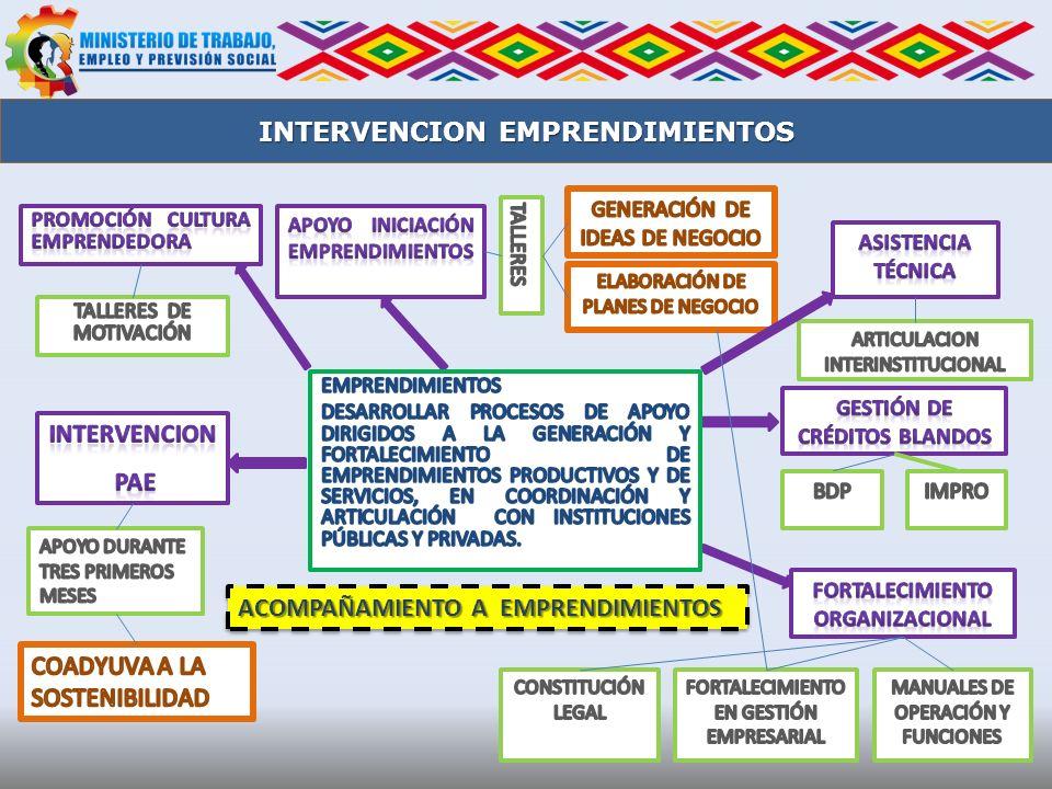 INTERVENCION EMPRENDIMIENTOS ACOMPAÑAMIENTO A EMPRENDIMIENTOS