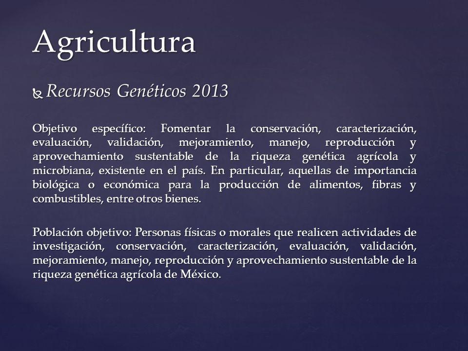 Recursos Genéticos 2013 Recursos Genéticos 2013 Objetivo específico: Fomentar la conservación, caracterización, evaluación, validación, mejoramiento,
