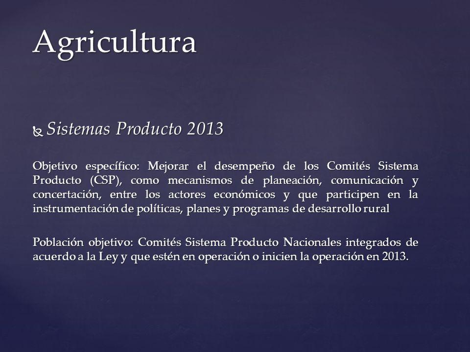 Sistemas Producto 2013 Sistemas Producto 2013 Objetivo específico: Mejorar el desempeño de los Comités Sistema Producto (CSP), como mecanismos de plan