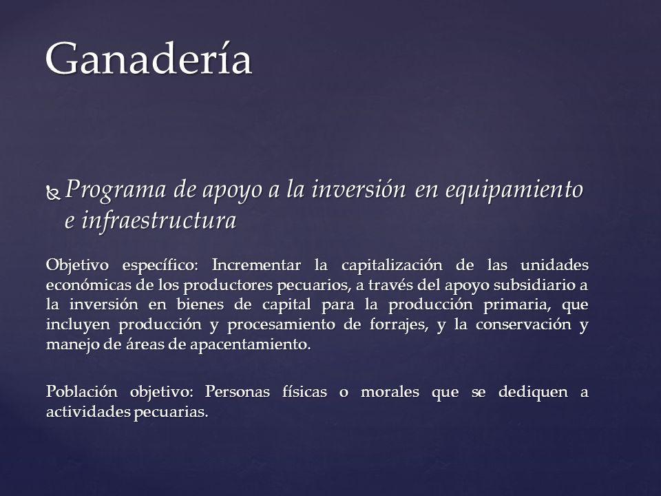 Programa de apoyo a la inversión en equipamiento e infraestructura Programa de apoyo a la inversión en equipamiento e infraestructura Objetivo específ