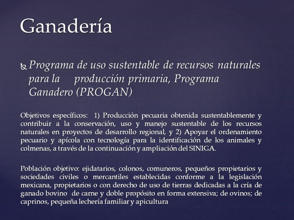 Programa de uso sustentable de recursos naturales para la producción primaria, Programa Ganadero (PROGAN) Programa de uso sustentable de recursos natu
