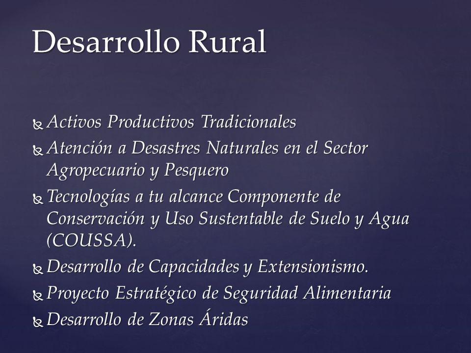 Activos Productivos Tradicionales Activos Productivos Tradicionales Atención a Desastres Naturales en el Sector Agropecuario y Pesquero Atención a Des