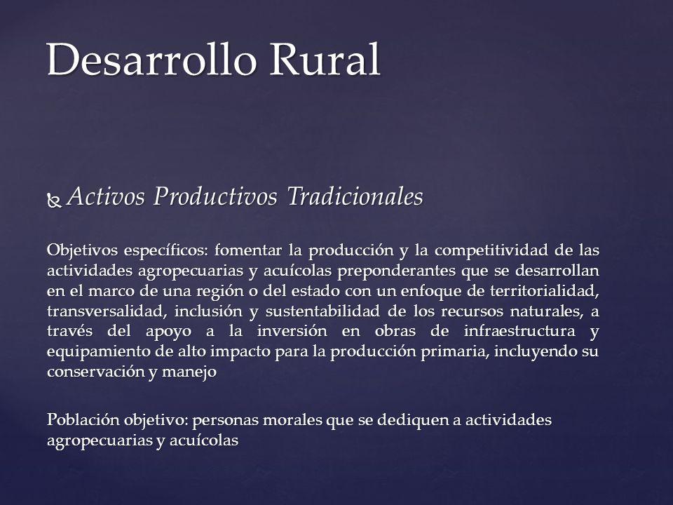 Activos Productivos Tradicionales Activos Productivos Tradicionales Objetivos específicos: fomentar la producción y la competitividad de las actividad