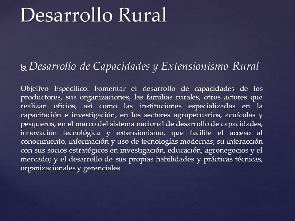 Desarrollo de Capacidades y Extensionismo Rural Desarrollo de Capacidades y Extensionismo Rural Objetivo Específico: Fomentar el desarrollo de capacid