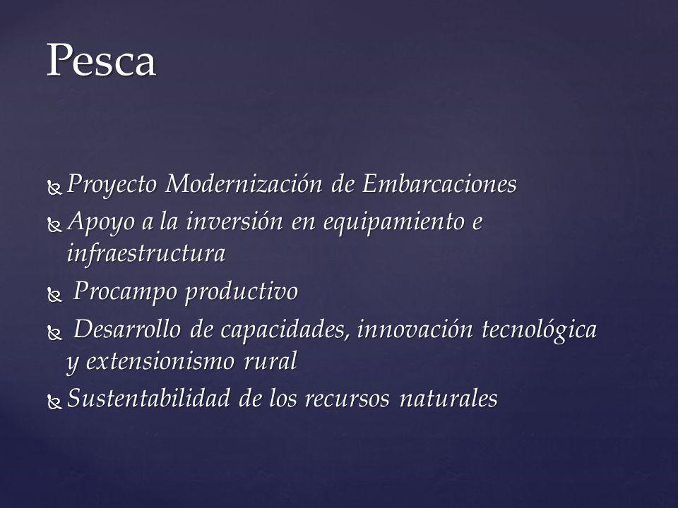 Proyecto Modernización de Embarcaciones Proyecto Modernización de Embarcaciones Apoyo a la inversión en equipamiento e infraestructura Apoyo a la inve