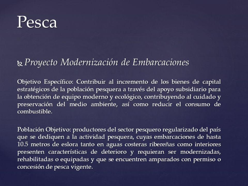 Proyecto Modernización de Embarcaciones Proyecto Modernización de Embarcaciones Objetivo Específico: Contribuir al incremento de los bienes de capital