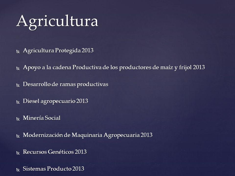 Agricultura Protegida 2013 Agricultura Protegida 2013 Objetivo específico: Fomentar la producción de alimentos sanos y de calidad, con enfoque de red de valor y de manera sustentable, a través de la producción bajo agricultura protegida.