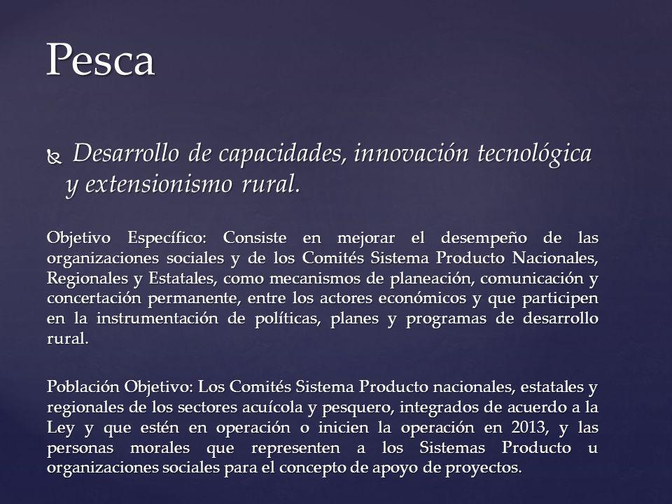 Desarrollo de capacidades, innovación tecnológica y extensionismo rural. Desarrollo de capacidades, innovación tecnológica y extensionismo rural. Obje