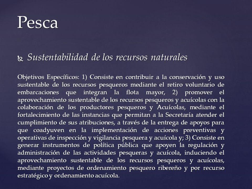 Sustentabilidad de los recursos naturales Sustentabilidad de los recursos naturales Objetivos Específicos: 1) Consiste en contribuir a la conservación