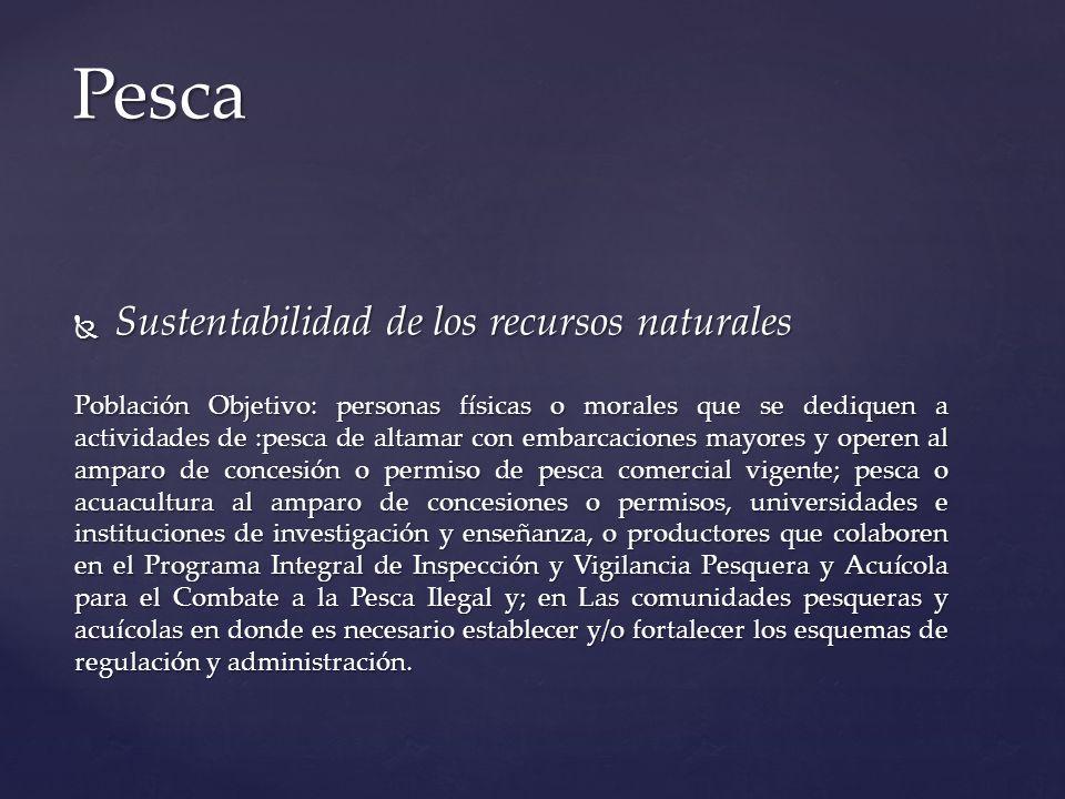 Sustentabilidad de los recursos naturales Sustentabilidad de los recursos naturales Población Objetivo: personas físicas o morales que se dediquen a a