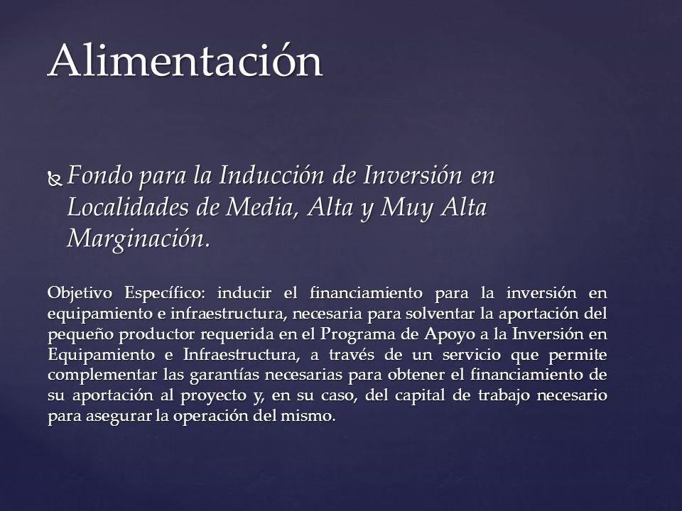 Fondo para la Inducción de Inversión en Localidades de Media, Alta y Muy Alta Marginación. Fondo para la Inducción de Inversión en Localidades de Medi